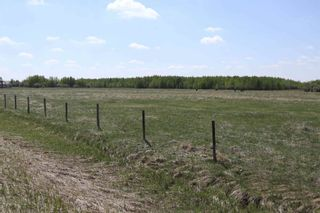 Photo 42: 48342 RR 262: Rural Leduc County House for sale : MLS®# E4231120
