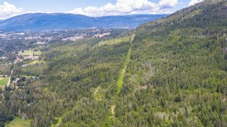 Photo 11: 2550 Southwest 10 Street in Salmon Arm: Foothill SW Vacant Land for sale : MLS®# 10209597