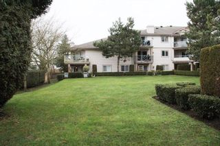 """Photo 16: 116 22150 48 Avenue in Langley: Murrayville Condo for sale in """"Eaglecrest"""" : MLS®# R2421515"""