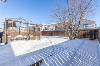 Photo 39: 85 Evansmeade Circle NW in Calgary: Evanston Detached for sale : MLS®# A1067552