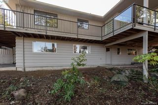 Photo 31: 1116 Nicholson St in VICTORIA: SE Lake Hill House for sale (Saanich East)  : MLS®# 806715