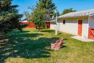 Photo 45: 220 HOMESTEAD Crescent in Edmonton: Zone 35 House for sale : MLS®# E4252303