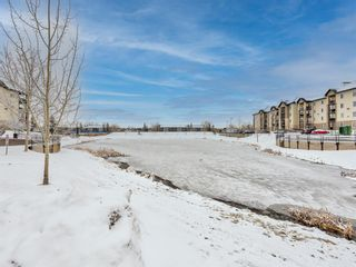 Photo 27: 8425 304 Mackenzie Way SW: Airdrie Apartment for sale : MLS®# A1085933