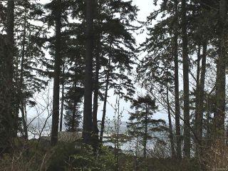 Photo 14: LT 1 Marine Dr in UCLUELET: PA Ucluelet Land for sale (Port Alberni)  : MLS®# 784343