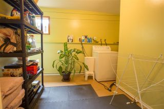 Photo 9: 41830 HOPE Road in Squamish: Brackendale House for sale : MLS®# R2069718