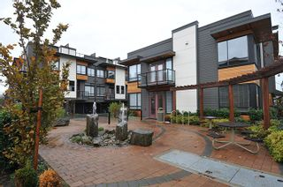 """Photo 16: 81 7811 209 Street in Langley: Willoughby Heights Townhouse for sale in """"EXCHANGE"""" : MLS®# R2121302"""