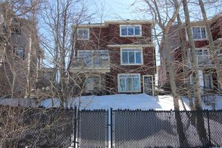 Photo 38:  in Calgary: Royal Oak Detached for sale : MLS®# A1087118