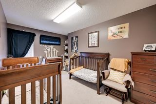 Photo 9: 11833 10A Avenue in Edmonton: Zone 16 House for sale : MLS®# E4249134