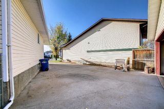 Photo 46: 317 Big Springs Court SE: Airdrie Detached for sale : MLS®# A1152002