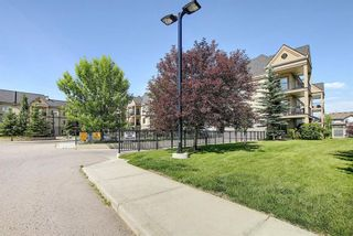 Photo 43: 327 52 CRANFIELD Link SE in Calgary: Cranston Apartment for sale : MLS®# A1104034