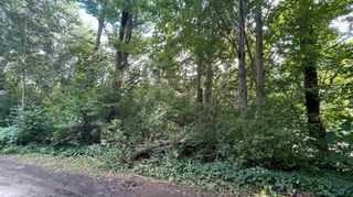 Photo 4: Lot 2 Victoria Drive in Kingston: 404-Kings County Vacant Land for sale (Annapolis Valley)  : MLS®# 202122819