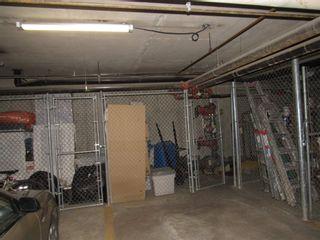 Photo 30: 317 10511 42 Avenue in Edmonton: Zone 16 Condo for sale : MLS®# E4248739