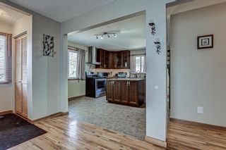 Photo 2: 126 Dovercliffe Way SE in Calgary: Dover Detached for sale : MLS®# A1082276