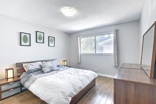 Photo 19: 6115 Dalcastle Crescent NW in Calgary: Dalhousie Detached for sale : MLS®# A1096650