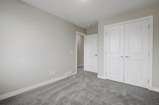 Photo 28: 57 RED SKY Terrace NE in Calgary: Redstone Detached for sale : MLS®# A1060906