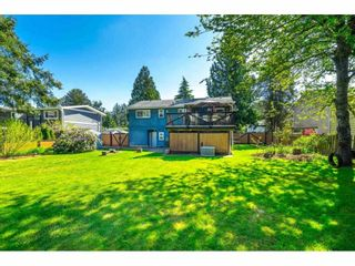 Photo 37: 3647 197A Street in Langley: Brookswood Langley House for sale : MLS®# R2578754