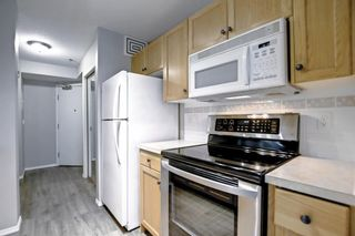 Photo 17: 1113 11 Chaparral Ridge Drive SE in Calgary: Chaparral Apartment for sale : MLS®# A1145437