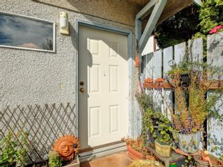 Photo 30: 447 S Stannard Ave in : Vi Fairfield West House for sale (Victoria)  : MLS®# 885268
