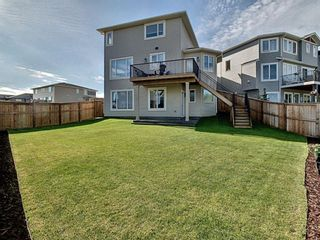 Photo 29: 57 Willow Court: Cochrane Detached for sale : MLS®# A1122951