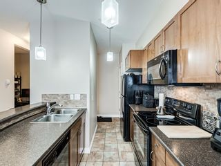 Photo 13: 307 2 HEMLOCK Crescent SW in Calgary: Spruce Cliff Apartment for sale : MLS®# A1076782
