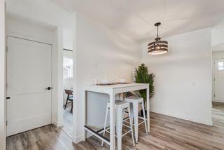 Photo 14: 216 Pinecrest Crescent NE in Calgary: Pineridge Detached for sale : MLS®# A1098959