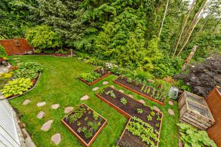 Photo 18: 32999 BOOTHBY Avenue in Mission: Mission BC House for sale : MLS®# R2384156