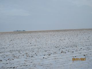Photo 6: 1,596.24 Acres- Parry, SK Area - RM Caledonia # 99 - Farmland For Sale
