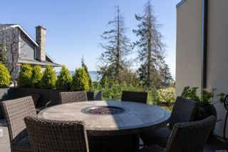 Photo 43: 4044 Hollydene Pl in : SE Arbutus House for sale (Saanich East)  : MLS®# 873482