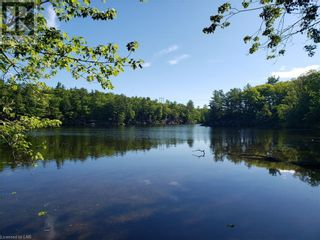 Photo 10: 8801 SEVERN RIVER in Orillia: Vacant Land for sale : MLS®# 40120545