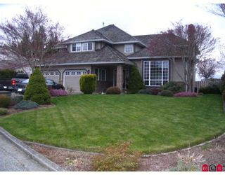Photo 1: 46702 CROSBY Place in Chilliwack: Fairfield Island House for sale : MLS®# H2802389