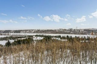 Photo 20: 403 1188 HYNDMAN Road in Edmonton: Zone 35 Condo for sale : MLS®# E4228866