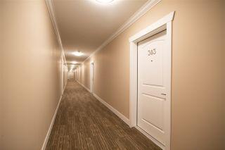 """Photo 16: 303 8183 121A Street in Surrey: Queen Mary Park Surrey Condo for sale in """"Celeste"""" : MLS®# R2383438"""