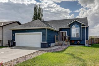 Main Photo: 114 Aerial Crescent: Drumheller Detached for sale : MLS®# A1062824
