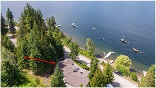 Photo 8: A 3610 Eagle Bay Road in Eagle Bay: Hummingbird Bay House for sale (EAGLE BAY)  : MLS®# 10186976