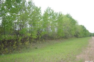 Photo 20: Weiss Lakefront Acreage in Big River: Lot/Land for sale : MLS®# SK834150