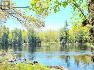 Photo 7: Medway River Road in Bangs Falls: Vacant Land for sale : MLS®# 202122898