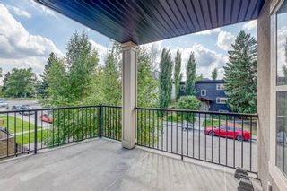 Photo 29: 301 3704 15A Street SW in Calgary: Altadore Apartment for sale : MLS®# A1116339
