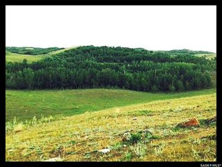 Photo 27: Round Hill Farm in Round Hill: Farm for sale (Round Hill Rm No. 467)  : MLS®# SK848796