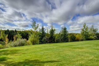 Photo 14: 268 Snowberry Circle in Rural Rocky View County: Rural Rocky View MD Detached for sale : MLS®# A1123459