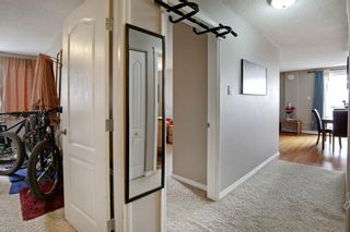 Photo 6: 43 528 Cedar Crescent SW in Calgary: Spruce Cliff Apartment for sale : MLS®# A1098683