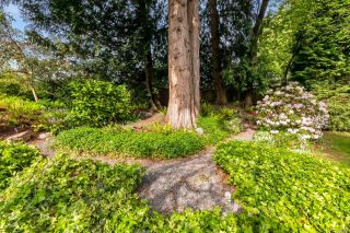 Photo 34: 4903 Bellcrest Pl in : SE Cordova Bay House for sale (Saanich East)  : MLS®# 874488