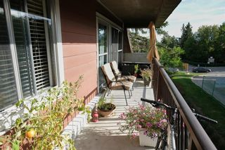 Photo 19: 55C 231 Heritage Drive SE in Calgary: Acadia Apartment for sale : MLS®# A1144362