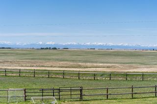 Photo 5: 418006 304 Street E: Rural Foothills County Detached for sale : MLS®# A1114068