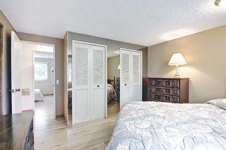 Photo 10: 3203 Oakwood Drive SW in Calgary: Oakridge Detached for sale : MLS®# A1109822