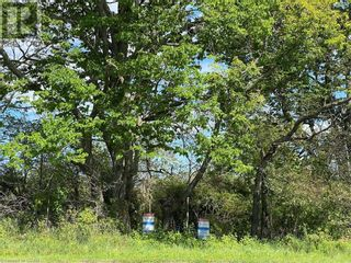 Photo 2: LOT 2 SUTTER CREEK Drive in Hamilton Twp: Vacant Land for sale : MLS®# 40138720
