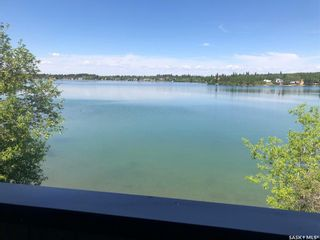 Photo 9: 38 Lakeview Drive in Crystal Lake: Residential for sale : MLS®# SK858695