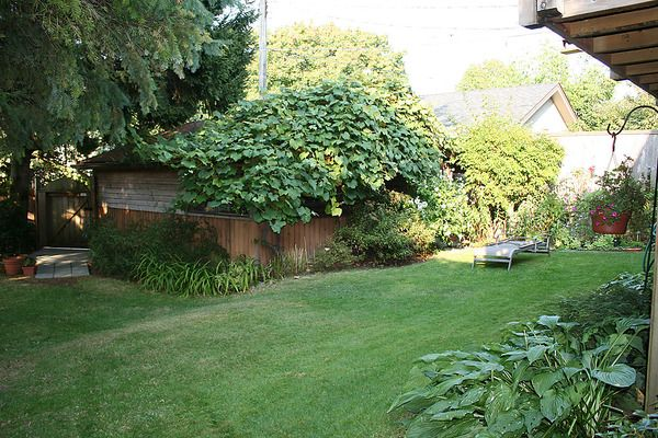 Photo 34: Photos: 4073 W 19TH Avenue in Vancouver: Dunbar House for sale (Vancouver West)  : MLS®# V995201