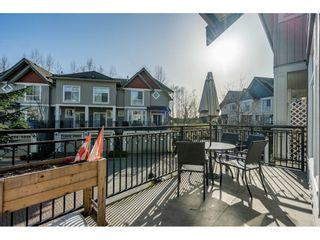 """Photo 10: 36 20120 68 Avenue in Langley: Willoughby Heights Townhouse for sale in """"The Oaks"""" : MLS®# R2560815"""