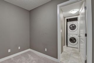 Photo 41: 2305 1317 27 Street SE in Calgary: Albert Park/Radisson Heights Apartment for sale : MLS®# A1060518