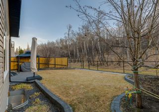Photo 41: 186 SHEEP RIVER Cove: Okotoks Detached for sale : MLS®# A1097900
